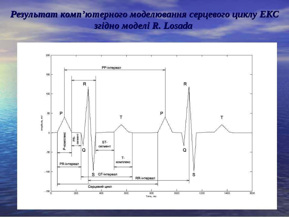 Результат комп'ютерного моделювання серцевого циклу ЕКС згідно моделі R. Losada