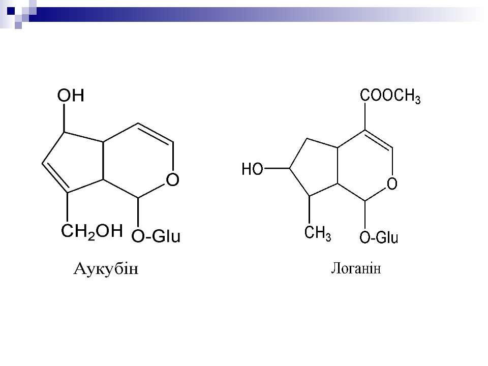 Прості іридоїди та їх глікозиди
