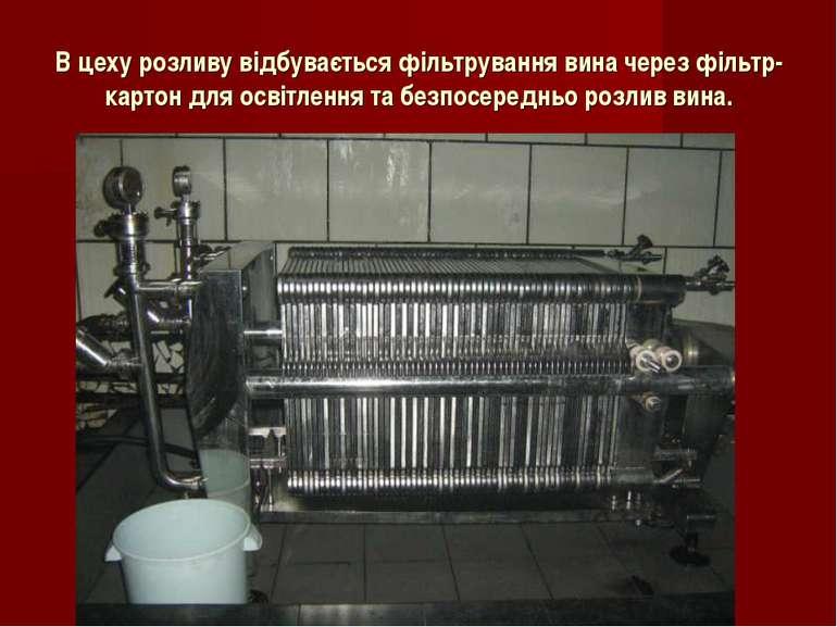 В цеху розливу відбувається фільтрування вина через фільтр-картон для освітле...