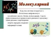 Молекулярний Будь-яка система складається з біологічних макромолекул: нуклеїн...