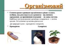 Організмовий Елементарною одиницею організмового рівня служить особина, яка р...