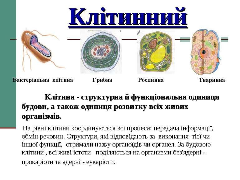 Клітинний Бактеріальна клітина Грибна Рослинна Тваринна Клітина - структурна ...