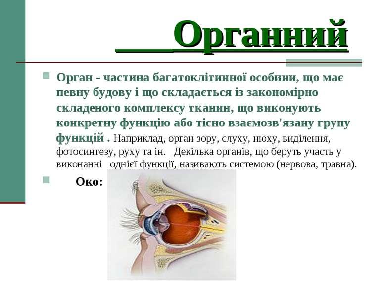 Органний Орган - частина багатоклітинної особини, що має певну будову і що ск...