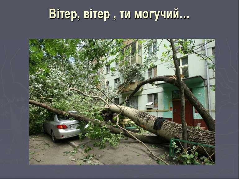 Вітер, вітер , ти могучий…