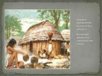 Основною культивованою культурою була кукурудза. Неодмінним звичаєм було допо...