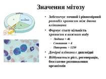 Значення мітозу Забезпечує точний і рівномірний розподіл хромосом між двома к...
