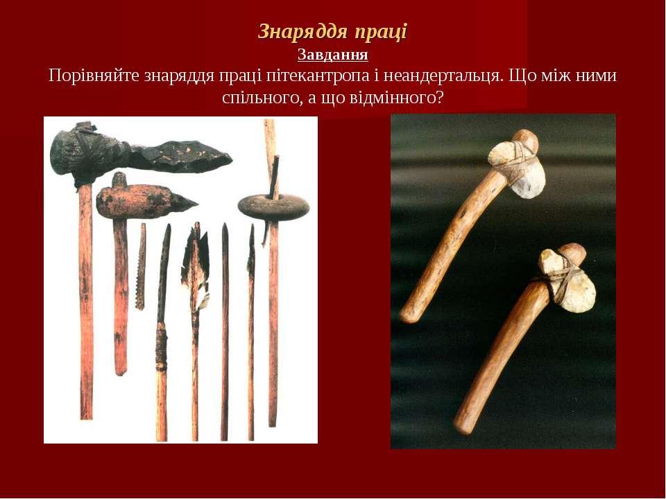 Знаряддя праці Завдання Порівняйте знаряддя праці пітекантропа і неандертальц...