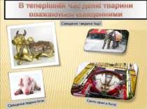 Священні тварини Індії
