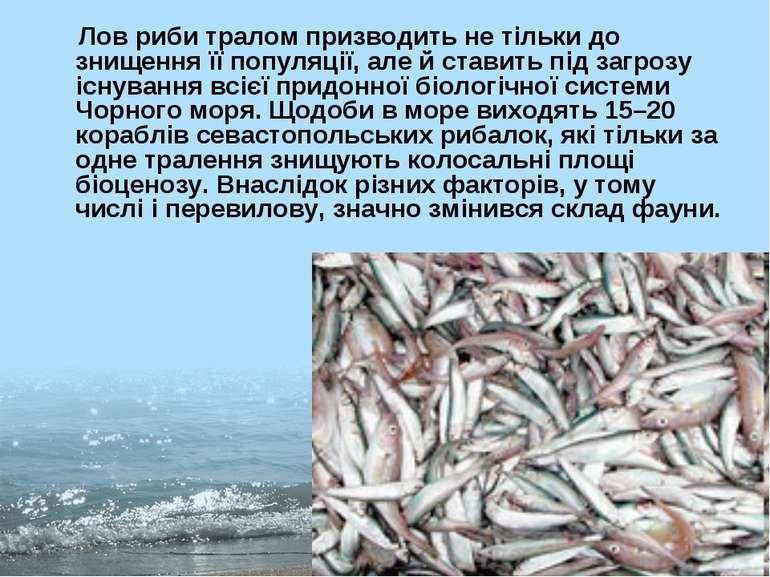 Лов риби тралом призводить не тільки до знищення її популяції, але й ставить ...