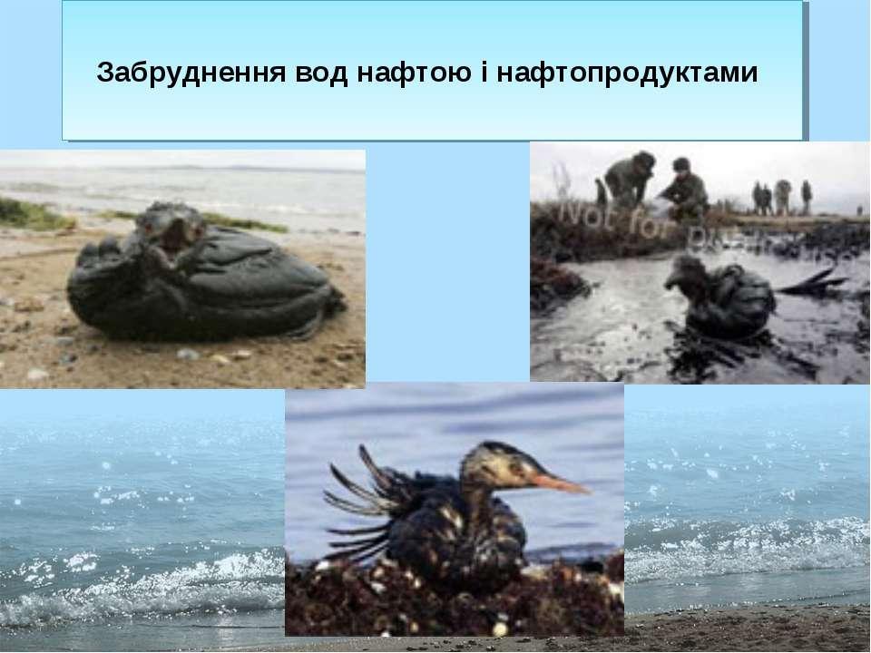 Забруднення вод нафтою і нафтопродуктами