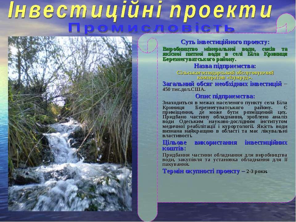 Суть інвестиційного проекту: Виробництво мінеральної води, соків та якісної п...