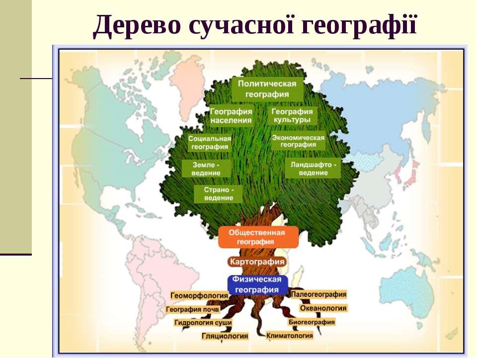 Дерево сучасної географії