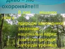 Але завжди пам'ятайте: Диво – ліс охороняйте!!! В зоні мішаних лісів є: приро...