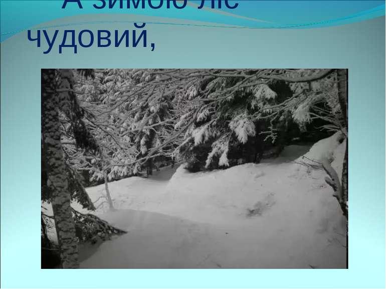 А зимою ліс чудовий,