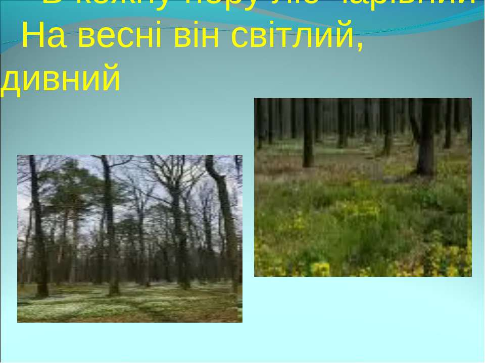 В кожну пору ліс чарівний На весні він світлий, дивний