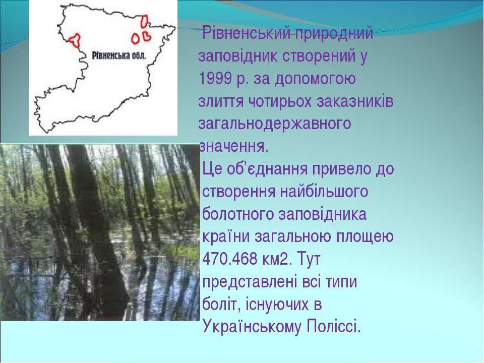 Рівненський природний заповідник створений у 1999 р. за допомогою злиття чоти...