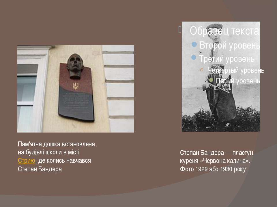 Степан Бандера— пластун куреня «Червона калина». Фото 1929 або 1930 року Пам...
