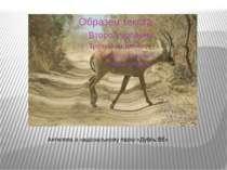 Антилопа в національному парку «Дубль ВЕ»