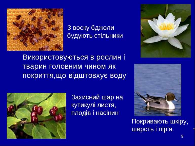 * Воски Використовуються в рослин і тварин головним чином як покриття,що відш...