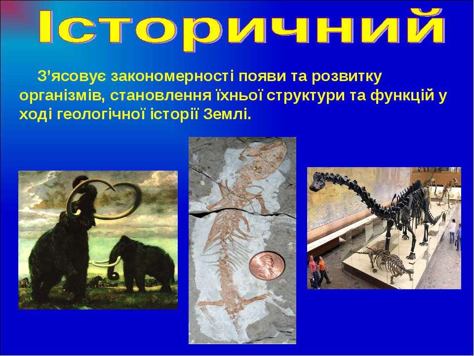 З'ясовує закономерності появи та розвитку організмів, становлення їхньої стру...