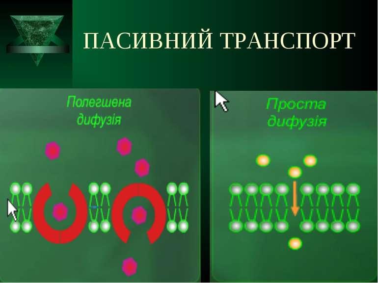 ПАСИВНИЙ ТРАНСПОРТ