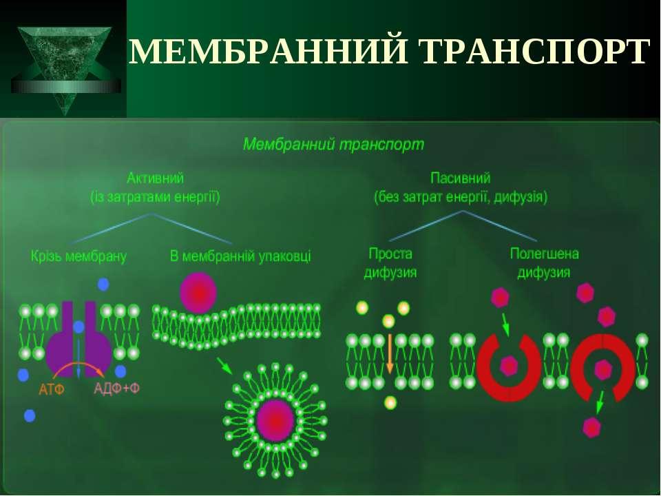 МЕМБРАННИЙ ТРАНСПОРТ
