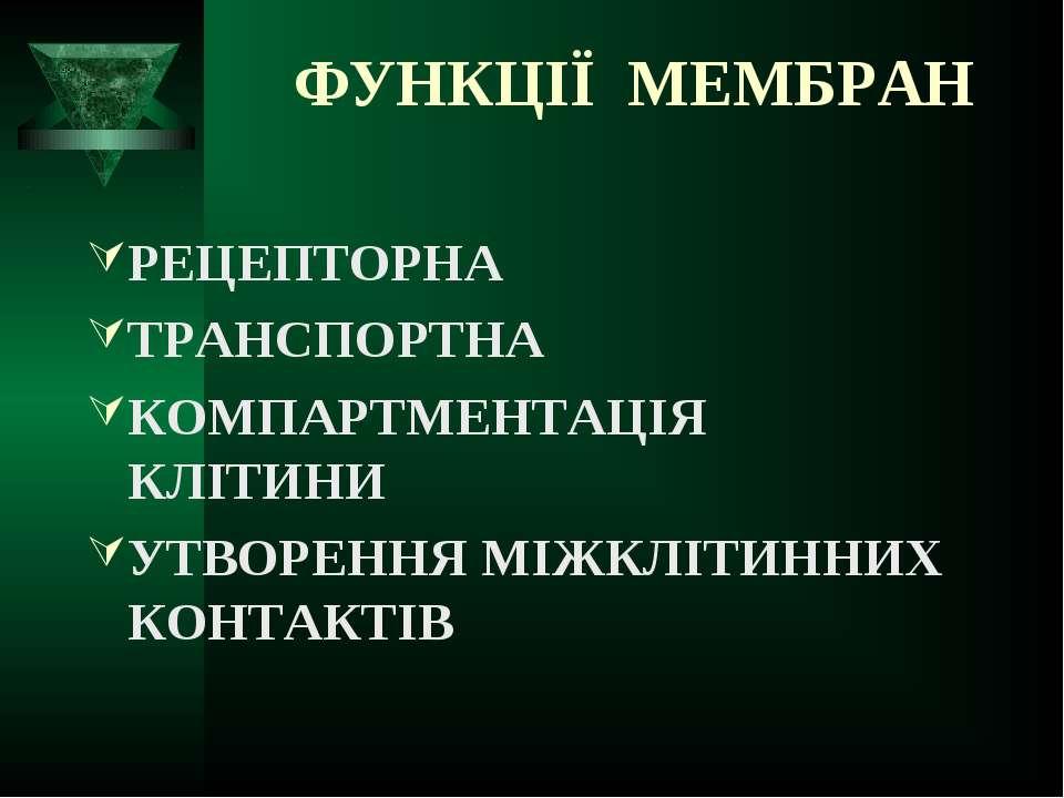 ФУНКЦІЇ МЕМБРАН РЕЦЕПТОРНА ТРАНСПОРТНА КОМПАРТМЕНТАЦІЯ КЛІТИНИ УТВОРЕННЯ МІЖК...