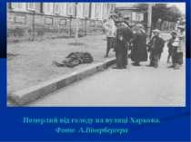 Померлий від голоду на вулиці Харкова. Фото А.Вінербергера