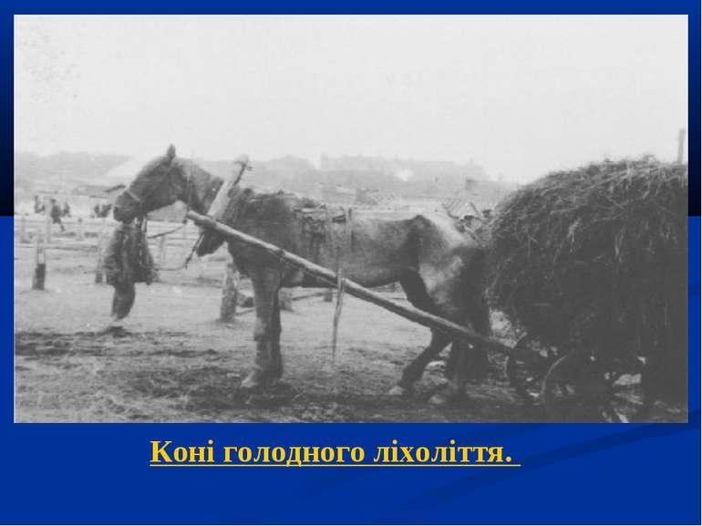 Коні голодного ліхоліття.