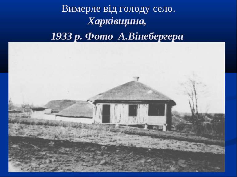 Вимерле від голоду село. Харківщина, 1933 р. Фото А.Вінебергера