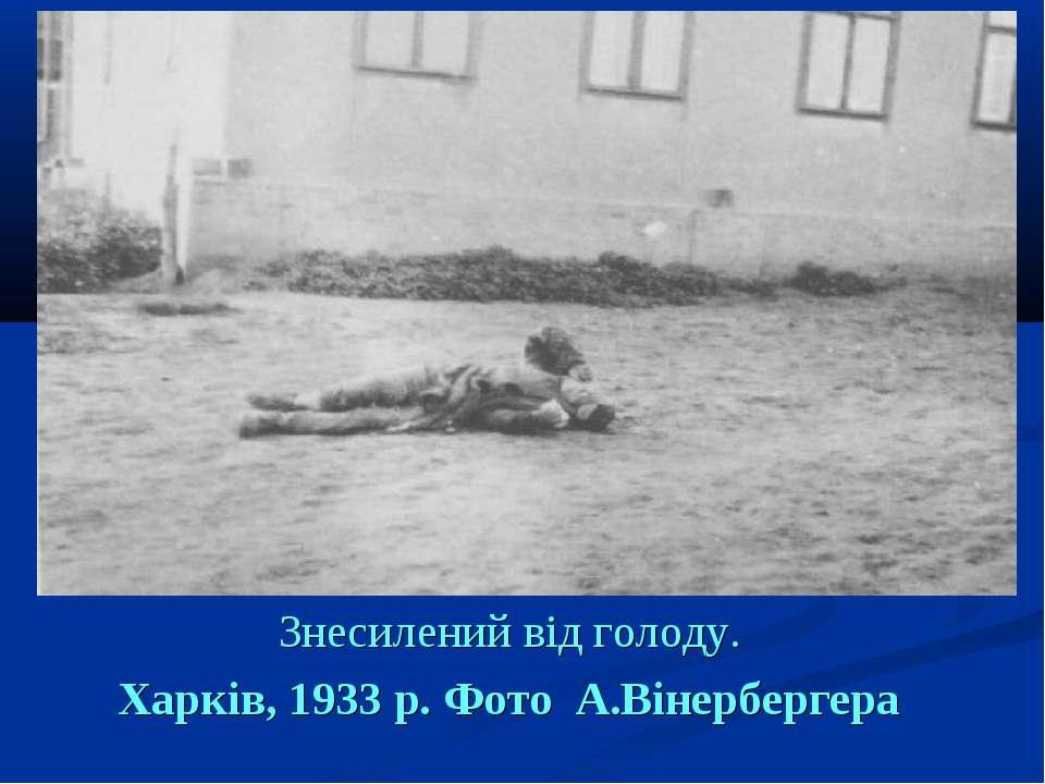 Знесилений від голоду. Харків, 1933 р. Фото А.Вінербергера