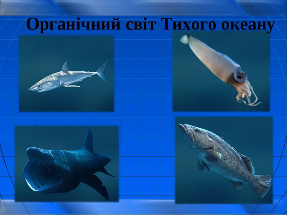 Органічний світ Тихого океану