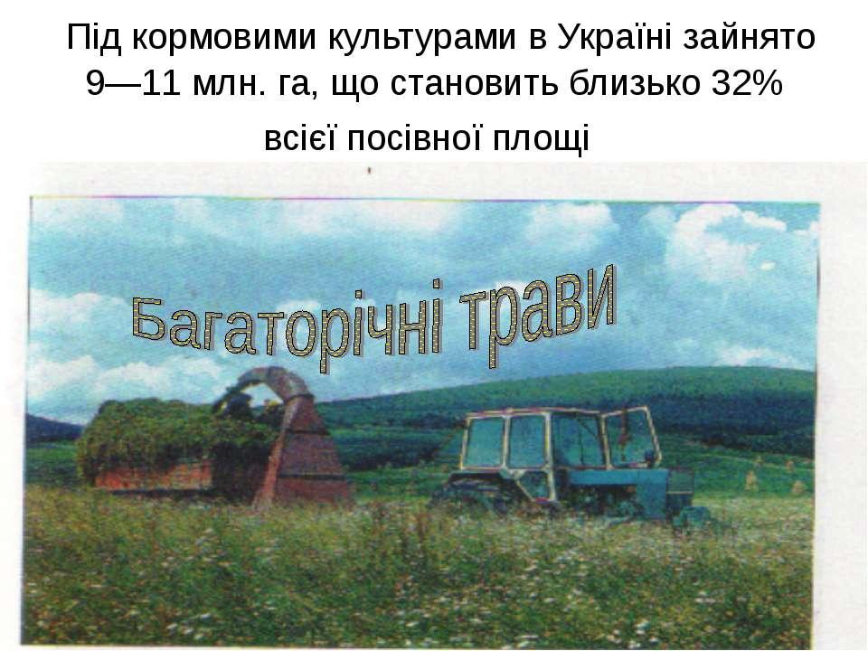 Під кормовими культурами в Україні зайнято 9—11 млн. га, що становить близько...