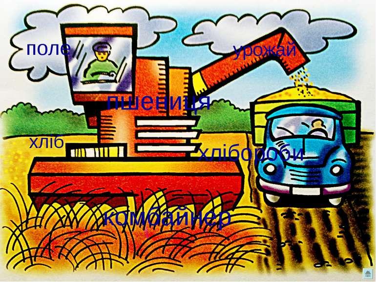 поле комбайнер пшениця хліб урожай хлібороби