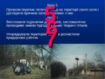 Крок 5 Провели перепис лелечих гнізд на території свого села і дослідили прич...