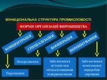 ФУНКЦІОНАЛЬНА СТРУКТУРА ПРОМИСЛОВОСТІ ФОРМИ ОРГАНІЗАЦІЇ ВИРОБНИЦТВА КОМБІНУВА...