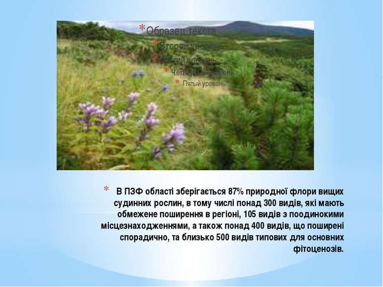 В ПЗФ області зберігається 87% природної флори вищих судинних рослин, в тому ...
