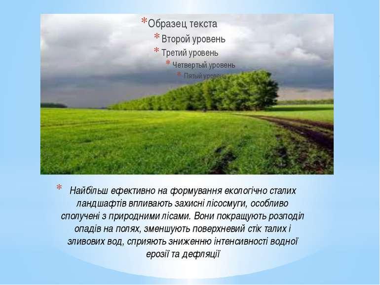 Найбільш ефективно на формування екологічно сталих ландшафтів впливають захис...