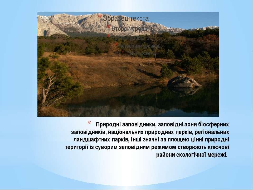 Природні заповідники, заповідні зони біосферних заповідників, національних пр...