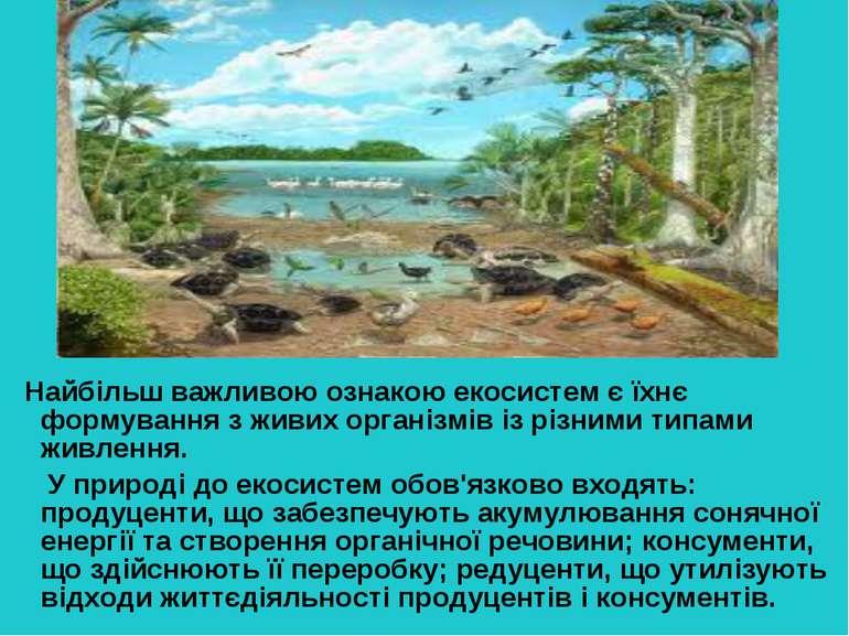 Найбільш важливою ознакою екосистем є їхнє формування з живих організмів із р...