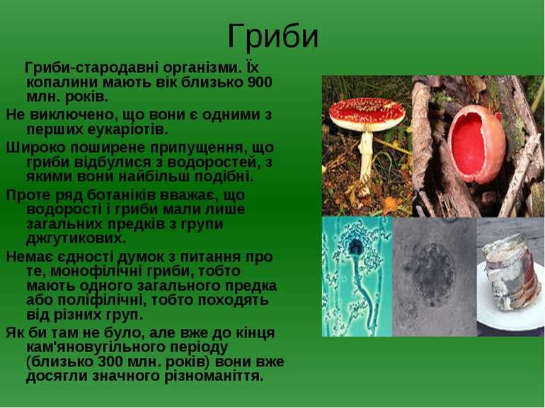 Гриби Гриби-стародавні організми. Їх копалини мають вік близько 900 млн. рокі...
