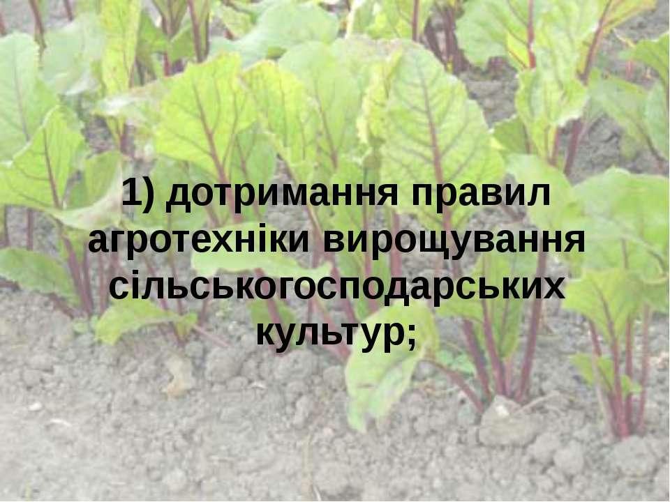 1) дотримання правил агротехніки вирощування сільськогосподарських культур;