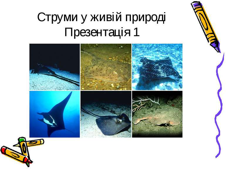 Струми у живій природі Презентація 1