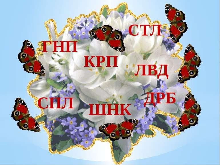 СТЛ КРП ЛВД ДРБ ШНК СПЛ ГНП