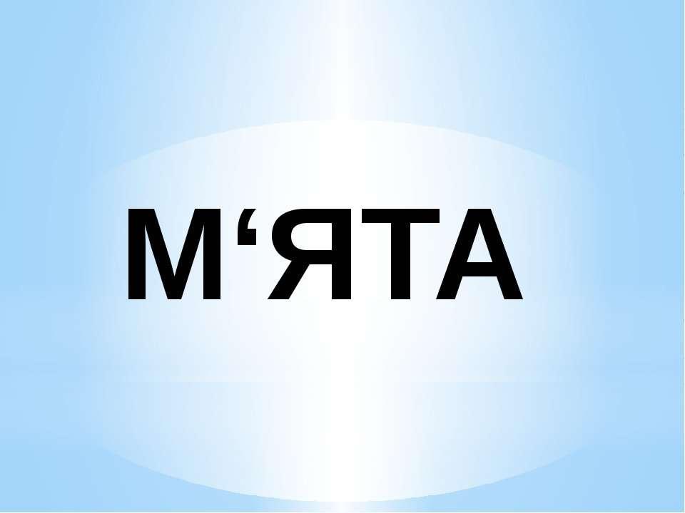 М'ЯТА