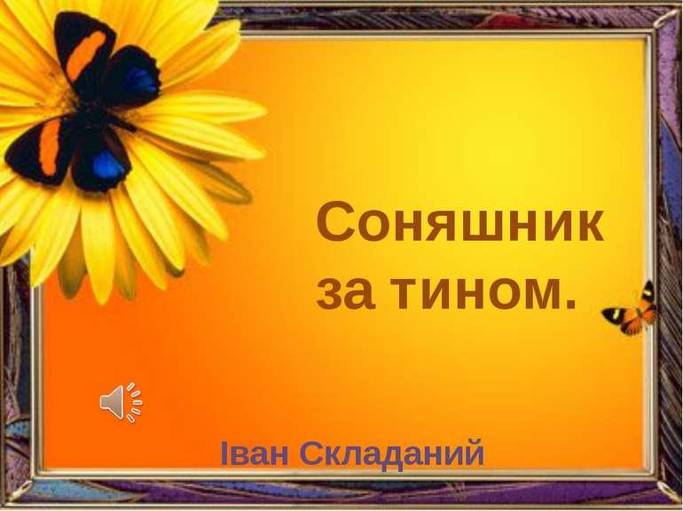 Соняшник за тином. Іван Складаний