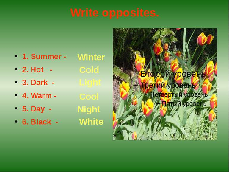 Write opposites.1. Summer -2. Hot -3. Dark -4. Warm -5. Day - 6. Black -