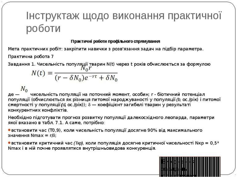 Інструктаж щодо виконання практичної роботи Excel у профільному навчанні Прак...