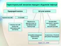 Парентеральний механізм передачі збудників інфекції Природній шляхи Штучні шл...