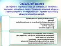 Соціальний фактор це сукупність соціальних умов, що впливають на біологічний ...